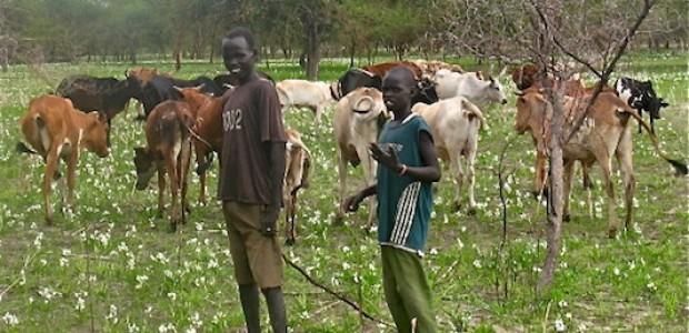 صبية من رعاة الأبقار في أبيي. سبب النزاع حول أبيي بين السودان وجنوب السودان المعاناة لسكان المنطقة، الذين لم يعد باستطاعتهم التحرك بحرية في أرضهم.