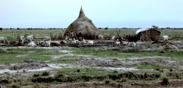 مزرعة في بنتيو، 11 يونيو،  2012