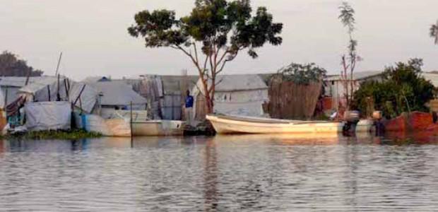 ضفاف نهر النيل في منطقة واو شلك، غربي مدينة ملكال، حيث يتواجد أكبر عدد من النازحين الهاربين من مدينة ملكال، عاصمة ولاية أعالي النيل، نوفمبر 2014.