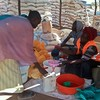 Refugees in Yida receive food aid, November 22, 2012.