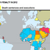 Interactive map by Amnesty International on the execution of death penalties in 2012.