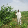 Farmer Mohammed Idris Adam in Kassala, Sept. 5.