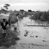 People leaving their homes admits floods in Bentiu, August 15, 2012. (photo: The Niles | Bonifacio Taban)