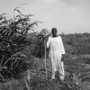 A farmer in Kassala State.