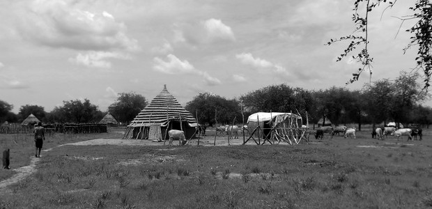 A typical homestead in the contested Abyei region, May 2016. Oil-rich Abyei abuts both Sudan and South Sudan and is claimed by the two countries. (photo: The Niles | Nancy Alek Kuol)