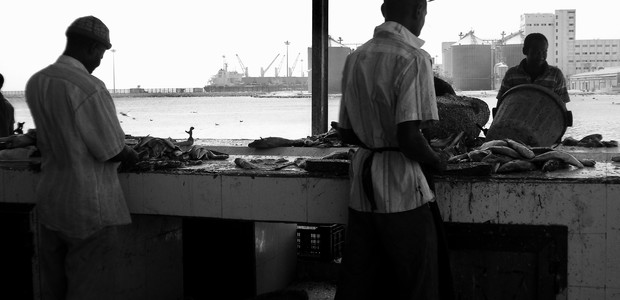 The main fish market in Port Sudan, March 6, 2014.                    (photo: The Niles | Abdalhady Alhag)