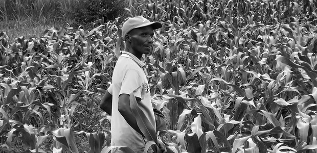 Kagina Ermogene, a specialised maize farmer in Rwanda. (photo: The Niles | Jean Paul Mbarushimana)