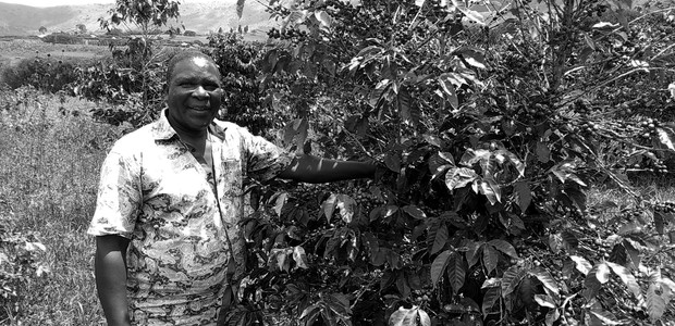George Muhanuka Tindyebwa has never tased his own coffee.  (photo: The Niles | Davis Mugume)