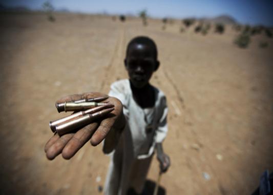 advocating anti genocide movement in darfur essay